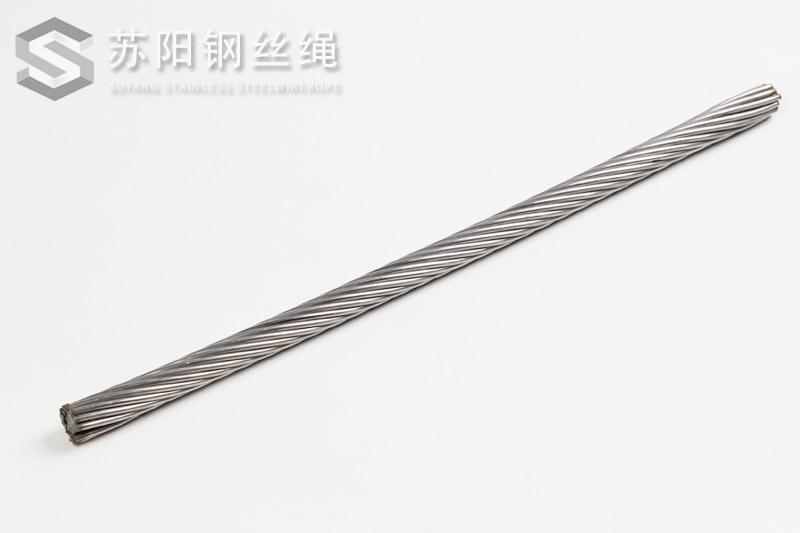 钢丝绳 1*19